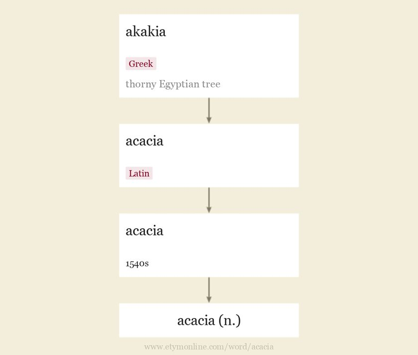 Origin and meaning of acacia