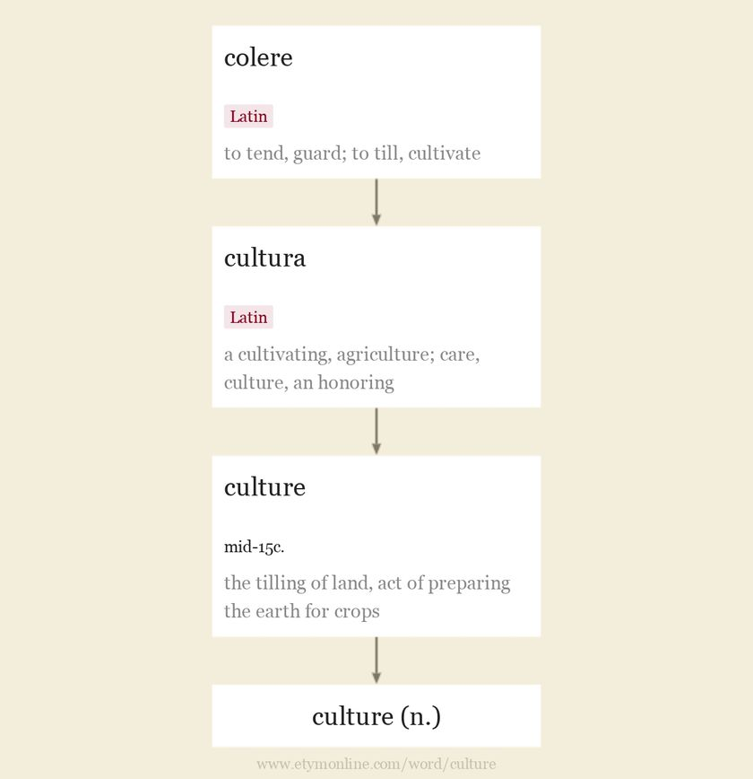 Origin and meaning of culture