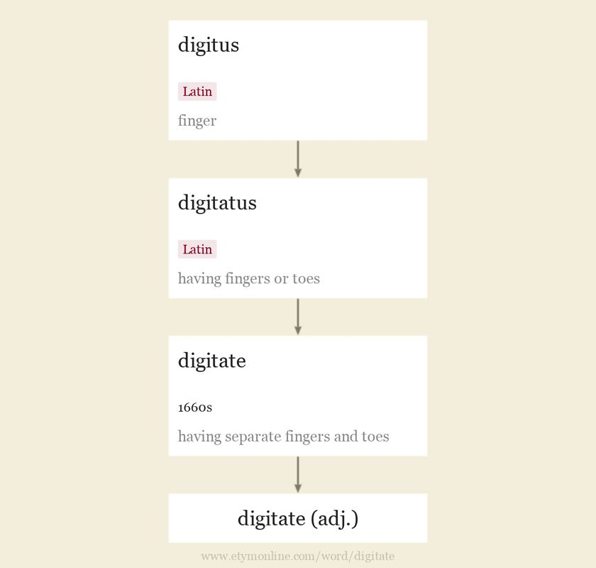 Origin and meaning of digitate