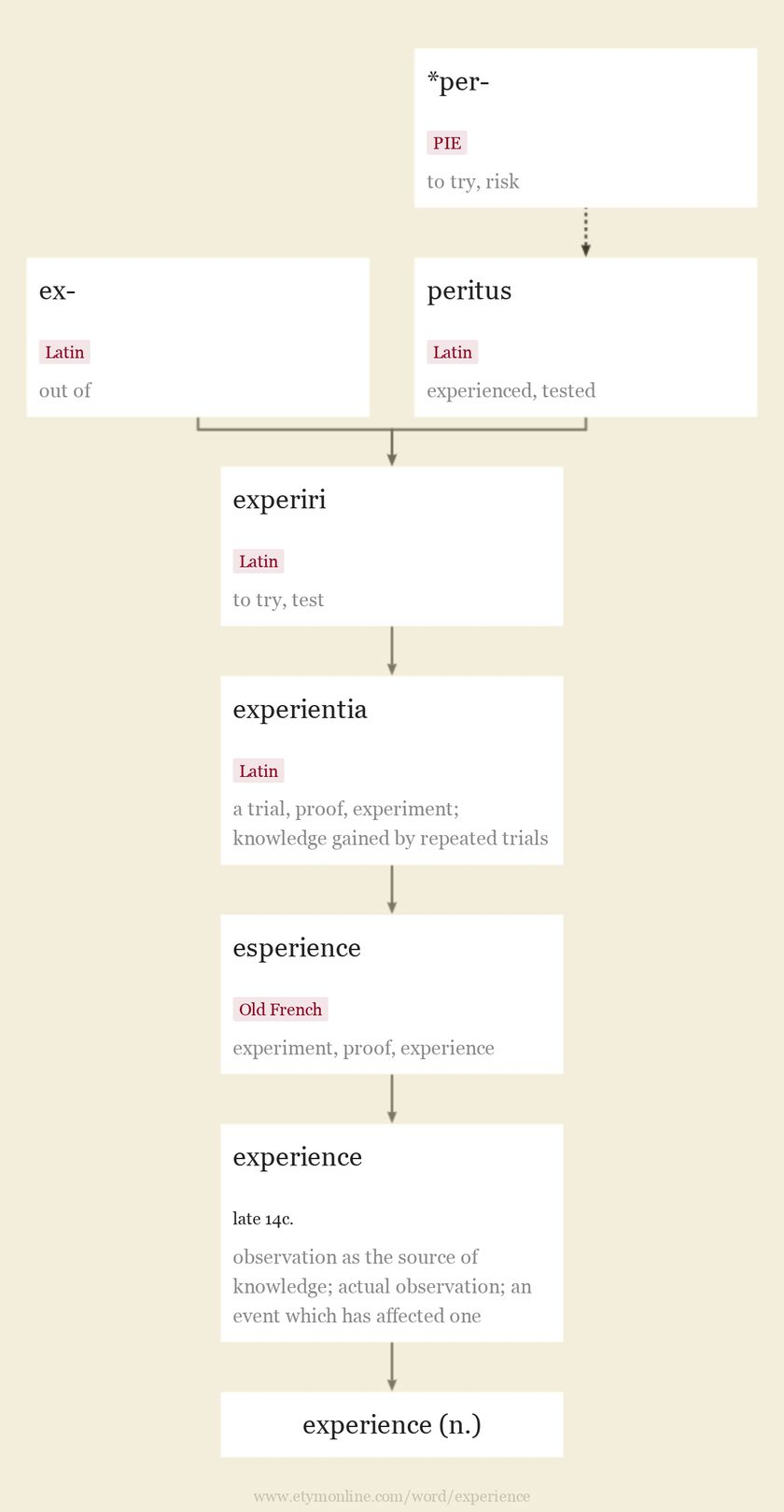 Origin and meaning of experience