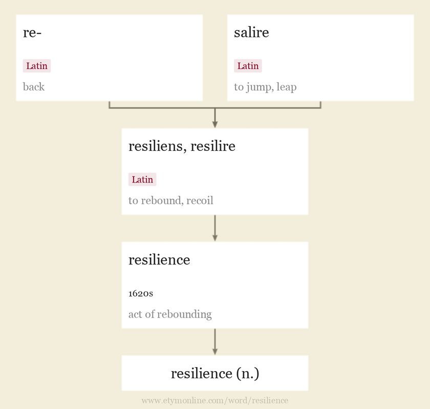 Origin and meaning of resilience